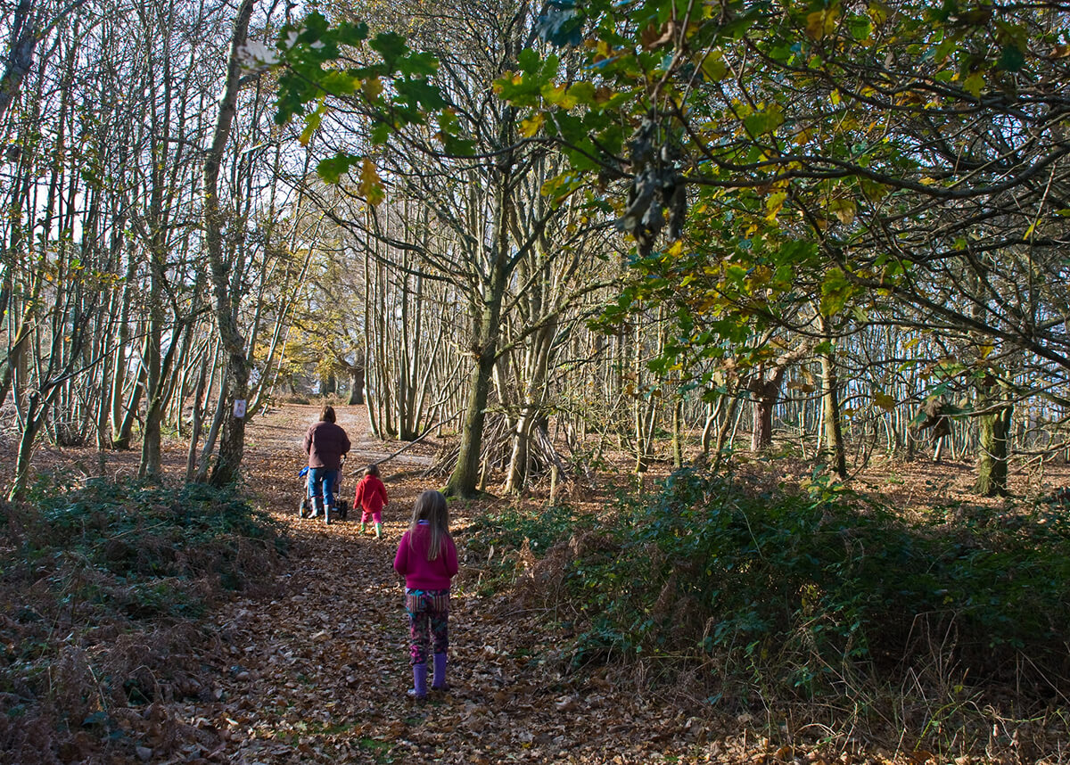 Family walking in Pulborough Brooks in West Sussex